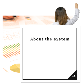 About the system